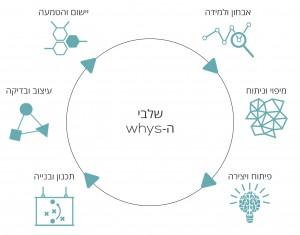 תהליך עיצוב שירות whys
